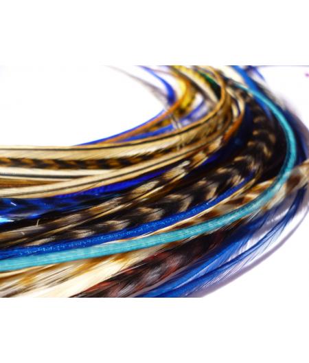 Assortiment Nature Bleu roi 5 plumes 20-25cm
