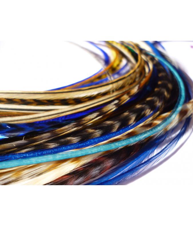 Assortiment Nature Bleu roi L 5 plumes