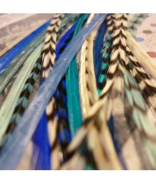 Assortiment Reine des Glaces 3 plumes 20-25cm