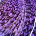 Plume rayée lilas XXL 30-35 cm