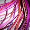 Pink Assortiment
