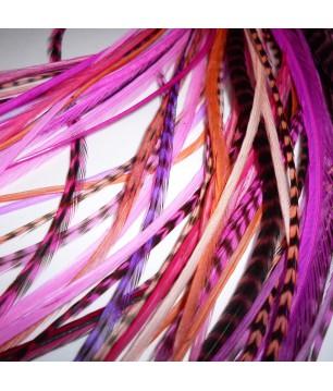 Assortiment Pink Power 2 plumes et plus 20-25cm