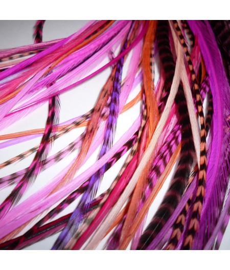 Assortiment Pink Power 2 plumes et plus 20-25cm