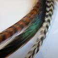 clip Nature XL
