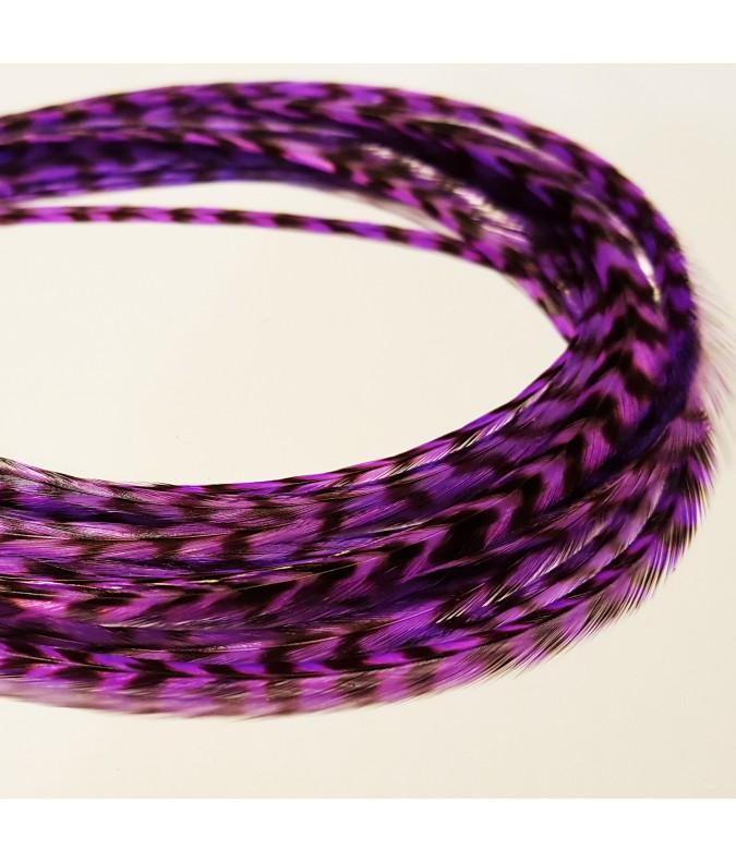 violet byzantin rayée XXL