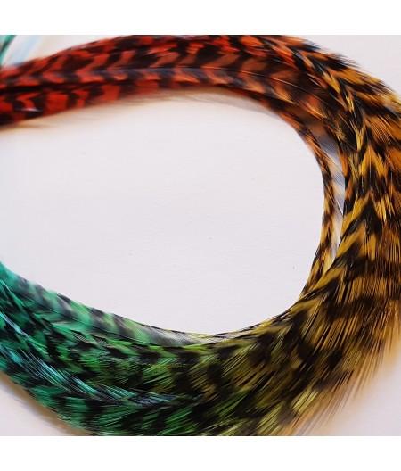 Aborigène rayée XL