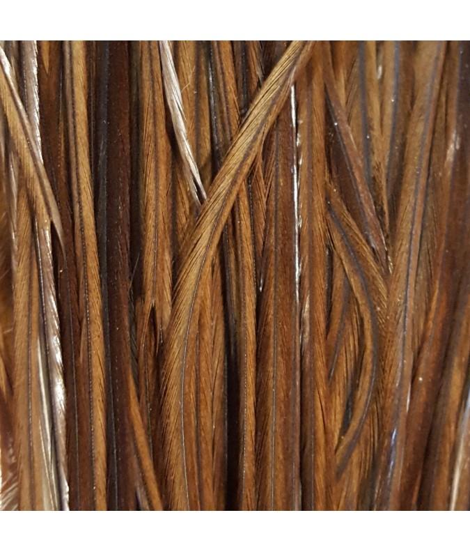 Light brown XL