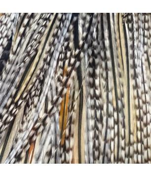 Pluma hybrid blanca y negra clara XL