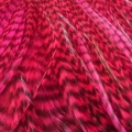 Plain Red Passion XL