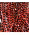 Rayée Auburn XL 25-30 cm