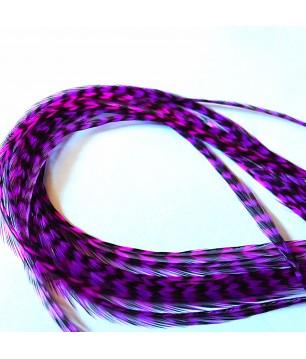 Violet byzantin rayée XXXL + 35cm