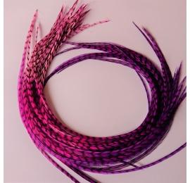flower power rayada 25-30cm