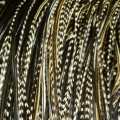 Grizzly Black & White dark variant XXL 30-35cm