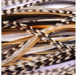 30 plumas XXXL (35-45 cm) natural