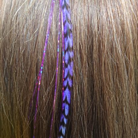 Plume violette ange