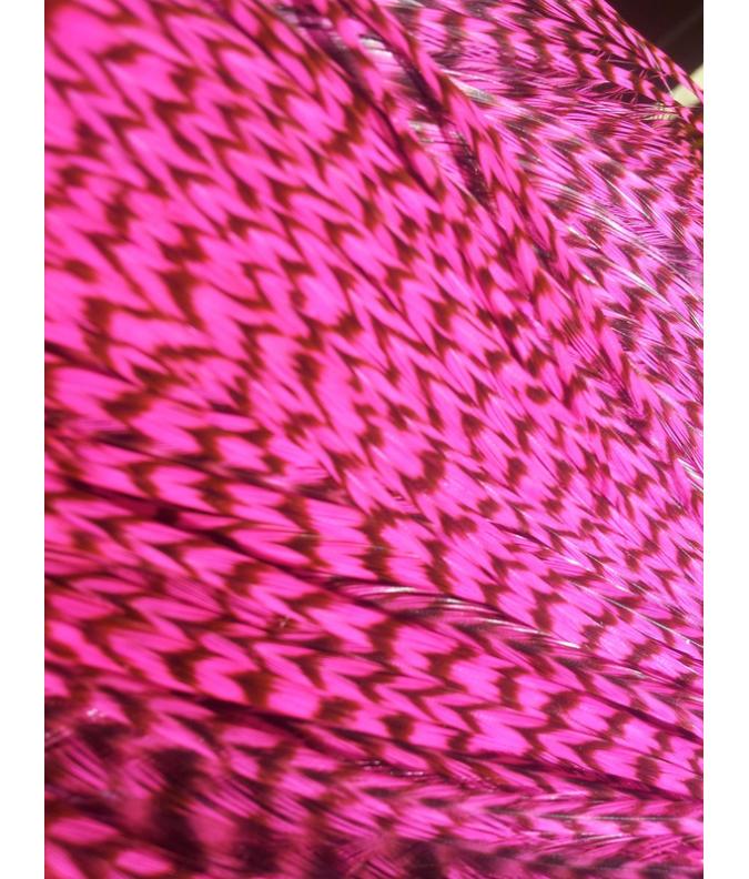 Rayée rose flashy L