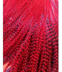 Rayée rouge passion L