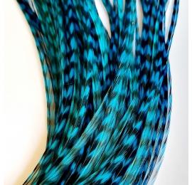 PROMO 10 rayées turquoises XXL fines 30-35cm