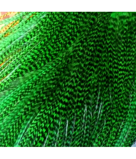Green Emerald XL