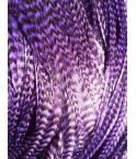 Grizzly Purple XL