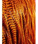 Grizzly Orange XL