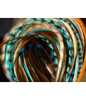 Assortiment Nature Turquoise XL 5 plumes