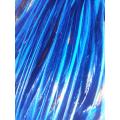 Unie bleue roi XL