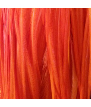 Plain bright orange L