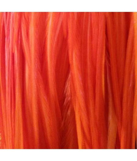 Plain bright orange L