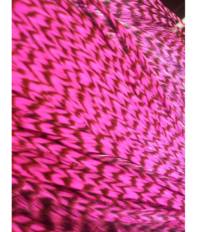 Rose fluo rayée XXL