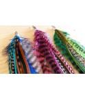 Boucle d'oreille 1 boucle EXTRA longues plumes naturelles et attache argent