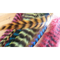 20 fluffy feathers XL 24cm+