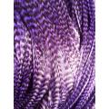 Plume rayée violette L