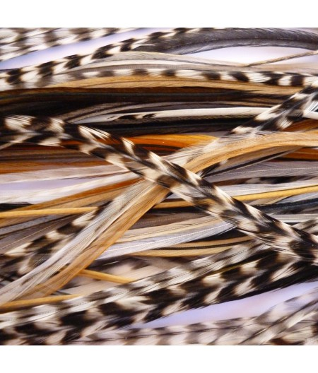 Batch of 20 Feathers natural (20 to 24cm)