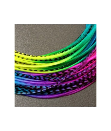 Lot 30 plumes multicolores (tie n dye) XL 24cm+