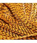 Gold rayée XL