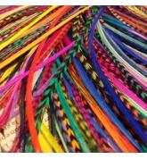 Lot 20 plumes L (20-24cm) uniquement couleur