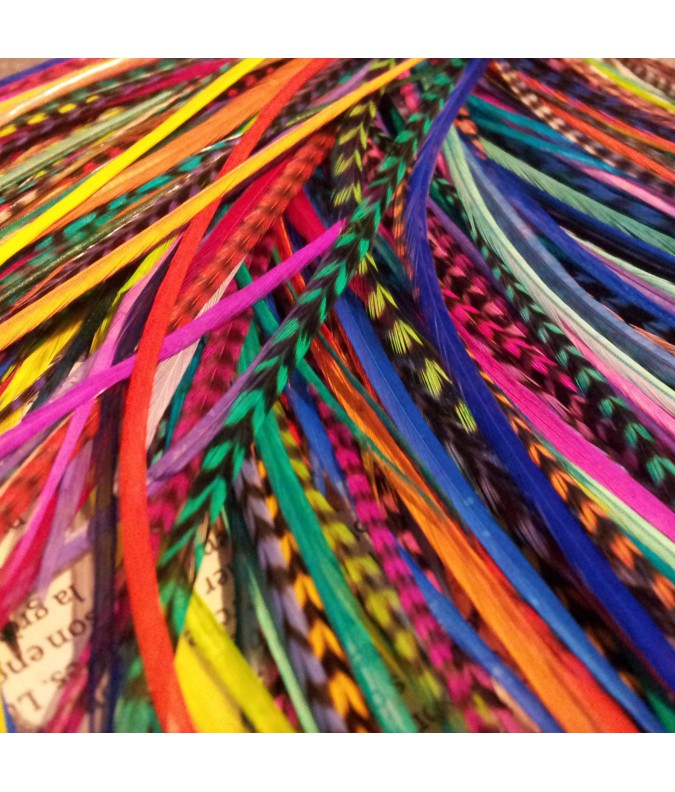 Batch of 20 Feathers (20 to 24cm)