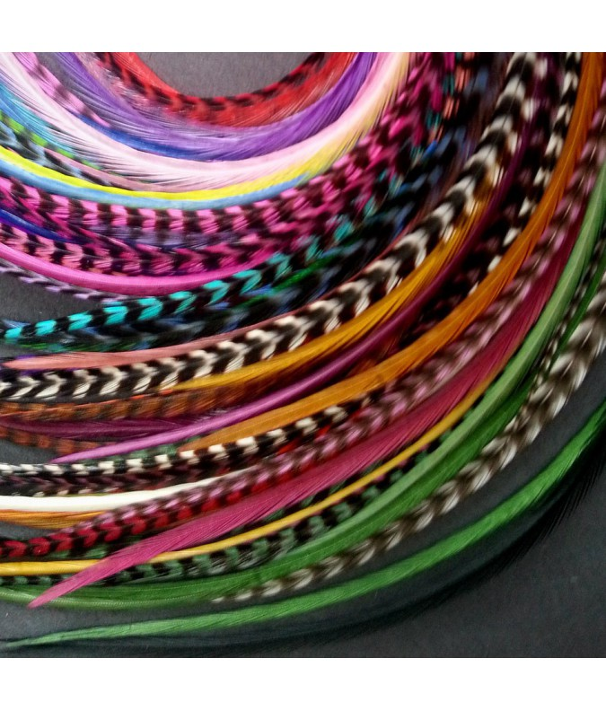 Batch of 100 Feathers (20 to 24cm)