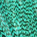 Bleu lagon rayée XXL
