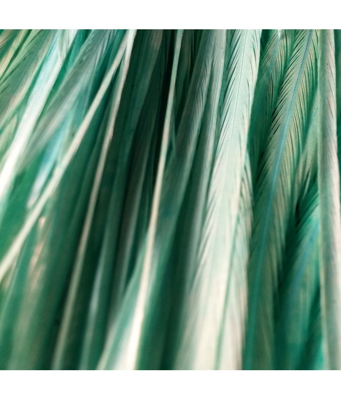Unie bleue jasmine XL