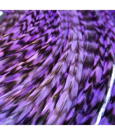 Plume rayée lila XL