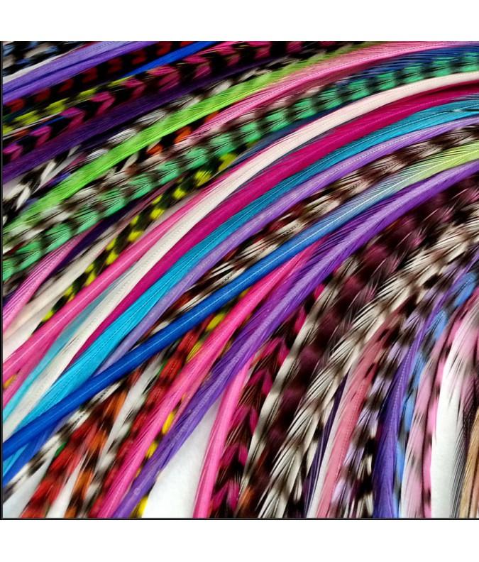 Lot 10 rayées couleurs XL fines