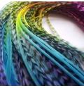 Plumes multicolores tie-dye